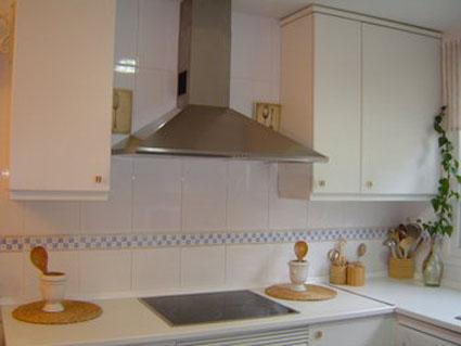 Campanas de cocina decoraci n y bricolaje - Cocina con campana decorativa ...